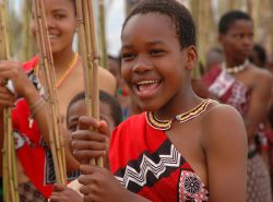 Reed-dancers,-Swaziland